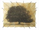Fagus 1 by Emma Buckmaster, Artist Print, Etching on beech leaves