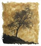 Fraxinus by Emma Buckmaster, Artist Print, Etching on ash leaves