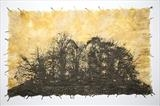 Nemorum by Emma Buckmaster, Artist Print, Etching on paper made from deciduous woodland leaves