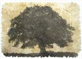 Quercus by Emma Buckmaster, Artist Print, Etching