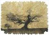 Quercus lV by Emma Buckmaster, Artist Print, Etching on oak leaves